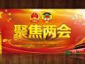 """2015 两会关于""""规范中国石墨产业发展的提案""""再次引起业界关注"""